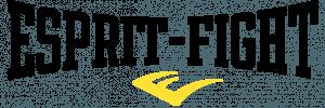 esprit-fight.fr | guide accessoires de boxe et sac de frappe